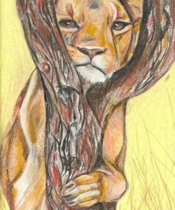 """""""Young lioness"""". Kate Stephenson. United Kingdom"""