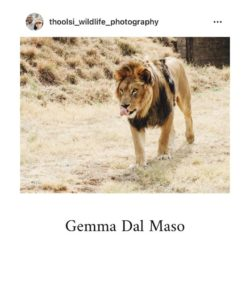 Gemma Dal Maso. Submitted by Miss Earth SA